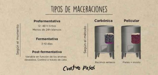 Types of maceration