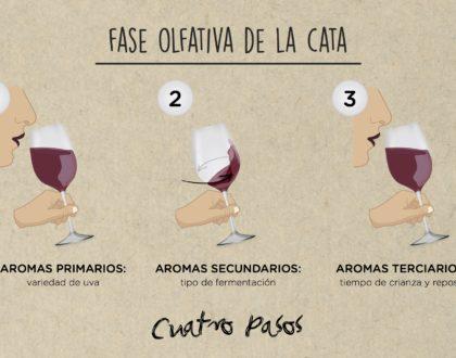 FASE OLFATIVA DE LA CATA