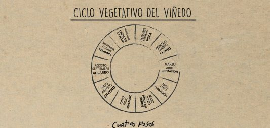 El ciclo vegetativo del vino