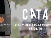 Vive la fiesta de la vendimia entre viñedos, diferenciando cepas y catando uvas