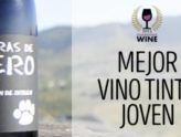Pizarras de Otero, Best Young Red Wine in Champions Wines