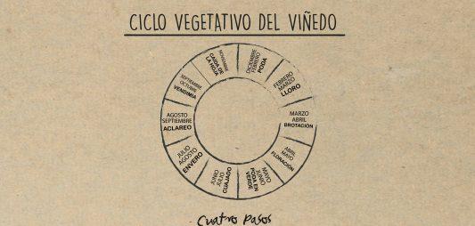 (Español) El ciclo vegetativo del vino