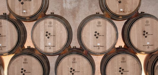 (Español) ¿Qué son los taninos del vino?